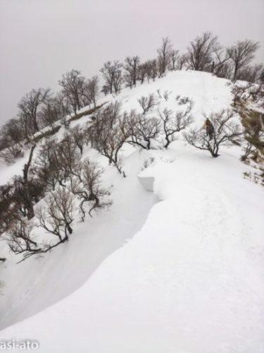 塔ノ岳、雪の稜線
