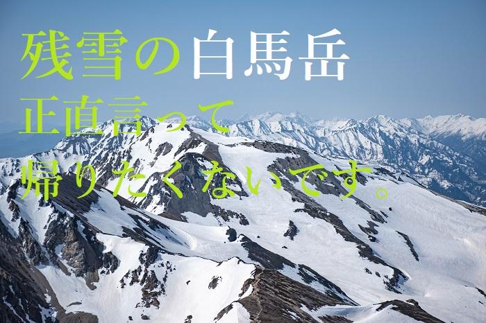 白馬岳 残雪
